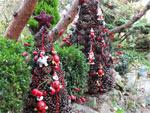 Un sapin de Noël très nature