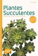 Plantes succulentes : couverture