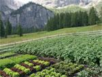 Jardiner en montagne