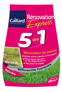 Caillard Renovation express 5 en 1