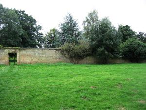 Installez le pluviomètre à l'écart des murs et des arbres