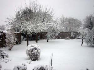 La neige a aussi une action fertilisante