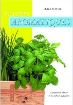 Plantes aromatiques : couverture