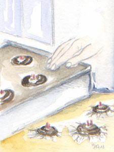 Caissette de bégonias