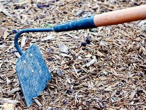 Quels outils pour désherber