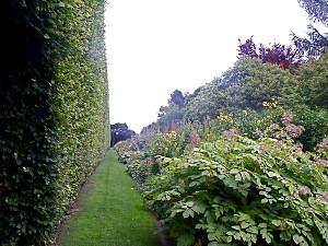 Un jardin à l'abri des regards