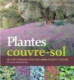 Plantes couvre-sol : couverture