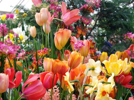 Couleurs printemps tout - Couleur du printemps ...