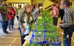 Troc-Plantes Vide-Jardin - ZIMMERSHEIM - Mai 2013
