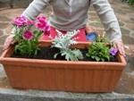 Une jardinière fleurie sur ma terrasse