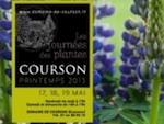 Journées des Plantes de Courson, du 17 au 19 mai 2013