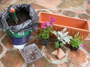 Plantes et matériel