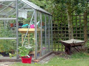 la culture des tomates sous serre froide dans mon jardin jardinage de mon jardin. Black Bedroom Furniture Sets. Home Design Ideas