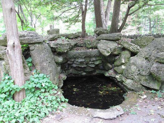 Bassin de sous-bois