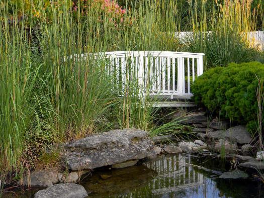 Un pont sur le bassin