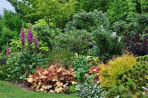 Le Jardin des Vigneaux D.R. - http://lejardindesvigneaux.over-blog.fr