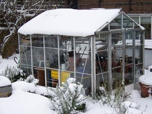 Serre sous la neige