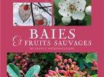 Baies et fruits sauvages de France métropolitaine