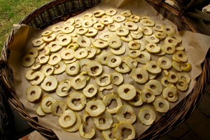 Séchage de pommes