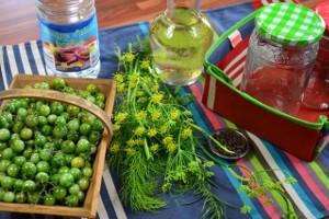 Tomates vertes au vinaigre