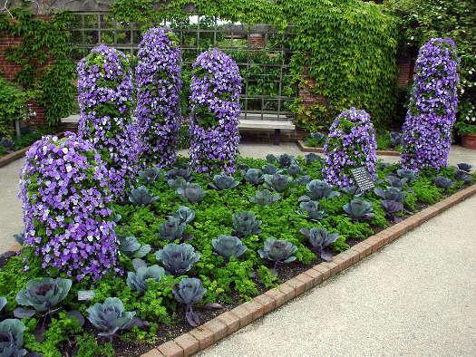 Jardin Pente Rocaille