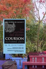 Journées des Plantes de Courson, automne 2013