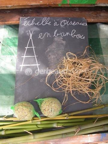 oiseaux fabriquer une echelle mangeoire avec les enfants. Black Bedroom Furniture Sets. Home Design Ideas