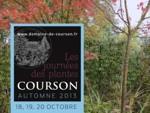 Courson : Journées des Plantes d'automne, du 18 au 20 octobre 2013
