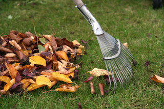 Faire du compost avec les feuilles mortes