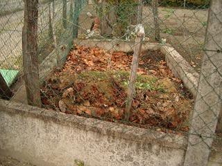Compost de feuilles