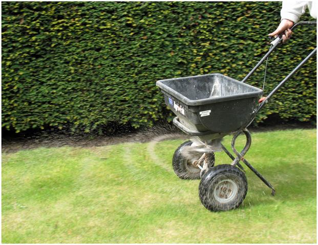 Pelouse et gazon conseils d 39 entretien tonte et traitements for Entretien de la pelouse