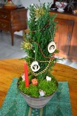 Composition de Noël avec cyprès