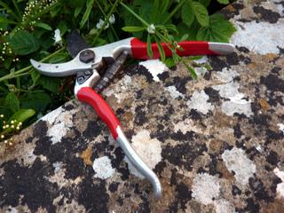 Les outils pour tailler