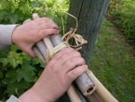 Construire un nichoir à insectes avec un enfant