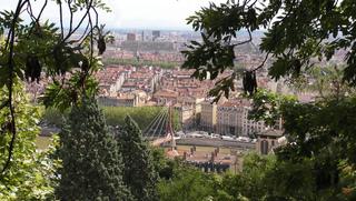 Arbres et jardins à Lyon