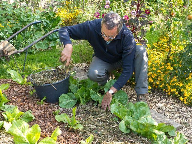 Le jardinage bio for Conseil pour le jardin