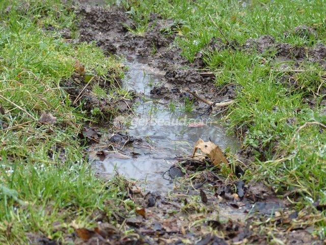 Le drainage du jardin et des plantes en pots for Peut on construire sur terrain agricole