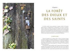 La mémoire des forêts