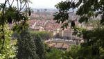 Prix national de l'arbre 2013 : Lyon récompensé