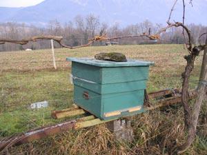 Parpaing sur une ruche. D.R. Jean-Paul Charpin