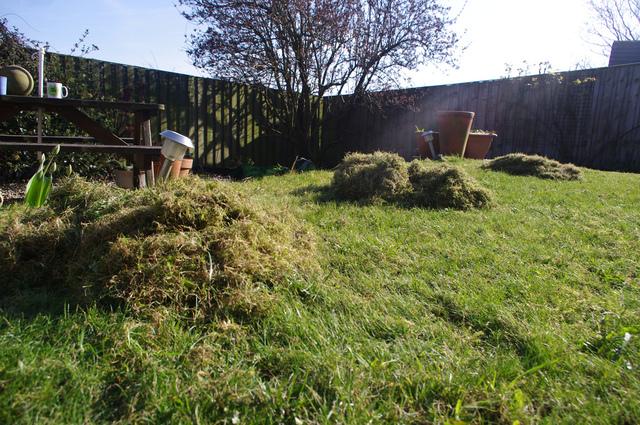 Eliminer la mousse sur la pelouse for Supprimer la mousse de la pelouse