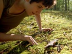 Le gazon, la pelouse - fiches pratiques
