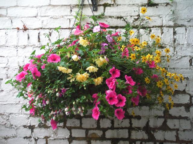 Un panier fleuri suspendu pour l 39 t for Composer un jardin fleuri