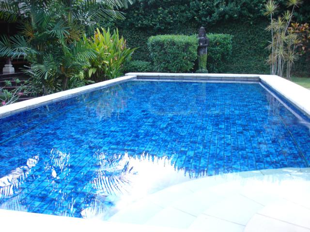 Quelles plantes autour de la piscine for Piscine zen