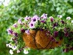 Un panier fleuri suspendu pour l'été