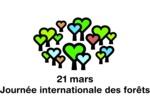 21 mars, Journée Internationale des Forêts