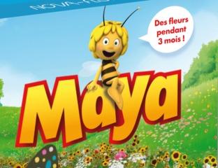 Gamme de graines Maya l'abeille - Nova-Flore / Nova-Flore