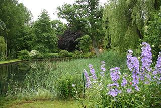 Jardin lauréat du Prix Bonpland 2013-2014