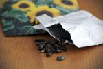 Stockage des graines : conseils pour une bonne conservation