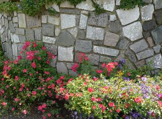 Mur de pierre fleuri à son pied